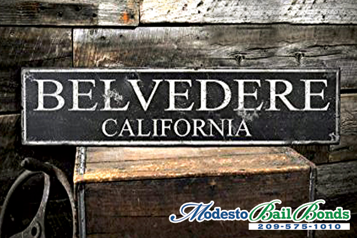 Belvedere Bail Bond Store
