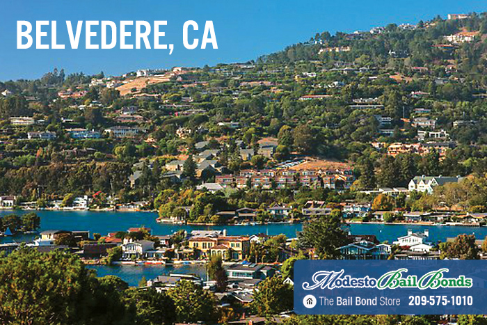 Belvedere Bail Bonds